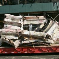 09-21-01_WTC_Scrap_Being_Removed.JPG