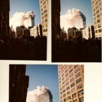 Bobs 9 _11 photos